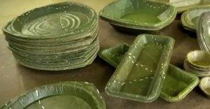 Leaf-Republic-plates
